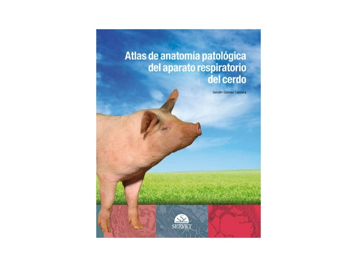 Atlas of anatomical pathology of the porcine respiratory system