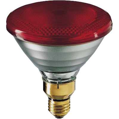 Philips Heat Lamp 175 watt PAR, p/1