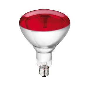 Philips Heat Lamp 250 watt, p/1